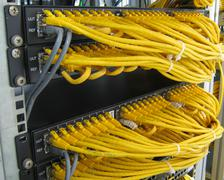 ethernet rj45 cables are connected to internet switch - stock photo