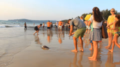 Happy peoples in sea turtle release - stock footage