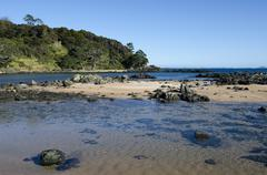 Cable bay in northland new zealand Stock Photos