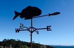wind weather vane - stock photo