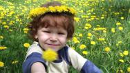 Stock Video Footage of Child in Dandelions HD