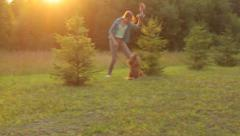 Girl and the best friend dog playing in the park with toy, sun rays Stock Footage