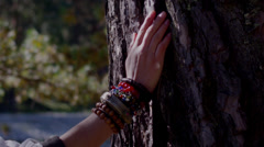 Female hand in regard to jewelry huge tree bark Stock Footage