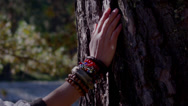 Stock Video Footage of female hand in regard to jewelry huge tree bark