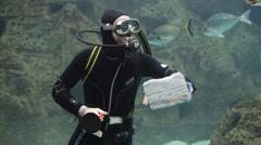 Diver sea turtle aquarium cleaning fish tank Stock Footage