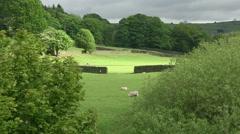 Bolton Abbey Fields - stock footage