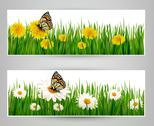 Stock Illustration of two banners with butterflies and flowers. vector.