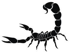 scorpion - stock illustration