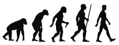 evolution - stock illustration