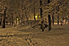 Bridge over the snowy river - stock photo
