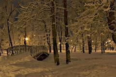 Bridge over the snowy river 2 - stock photo