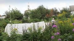 Stock Video Footage of an elderly woman gardener in his garden