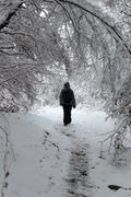 woman walking in winter time - stock photo