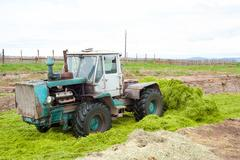 Tractor stores up silage Stock Photos