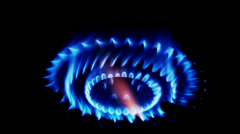 Natural gas inflammation in stove burner,close up view on dark background. Stock Footage