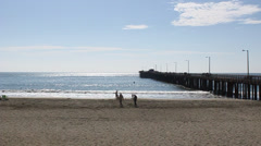 Beach and Long Pier Stock Footage