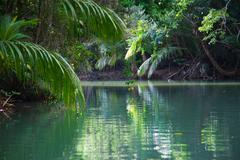 tranquil lake with lush tropical vegetation - stock photo