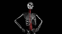 Human skeleton model rotate. Alpha matted Stock Footage
