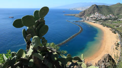 Tropical white sand beach Teresitas located in Tenerife Stock Footage