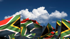 Waving South African Flags - stock footage