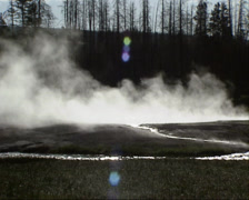 Steam and creek in Black Sand Basin, Yellowstone National Park Stock Footage