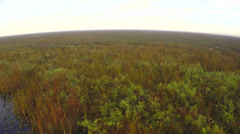 Florida Everglades Arkistovideo