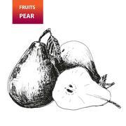 Fruits. pear Stock Illustration