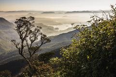 Misty sunrise view of mountains on the climb up adam's peak Stock Photos