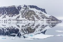 alkefjellet (auk mountain) at kapp fanshawe, spitsbergen, svalbard, norway - stock photo