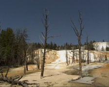 Water flow and dead trees on travertine terraces of Mammoth Hot Springs - stock footage