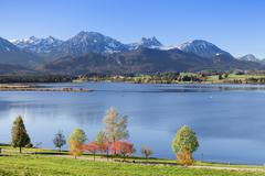 hopfensee lake in autumn, near fussen, allgau, allgau alps, bavaria, germany - stock photo