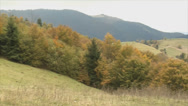 Stock Video Footage of pan of Carpathian landscape