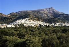 Filoti in olive groves, tragea, naxos, cyclades, greece Stock Photos