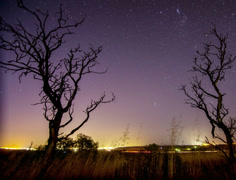 Night time lapse of startrails Stock Footage