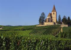 Church and vineyards, hunawihr, alsace, france Stock Photos
