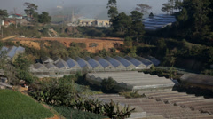 Green Houses in Da Lat Stock Footage
