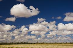 Outback scenery, queensland, australia, pacific Stock Photos