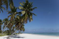 punta cana, dominican republic, west indies, caribbean, central america - stock photo