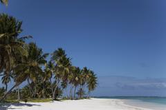 Punta Cana, Dominikaaninen tasavalta, Länsi-Intiassa, Karibialla, Keski-Amerikas Kuvituskuvat