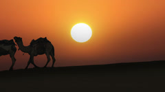 Cameleers leading caravan of camels in desert - silhouette against sunset Stock Footage
