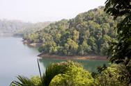 Stock Photo of neyyar reservoir and wildlife sanctuary, trivandrum, kerala, india, asia