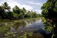 Stock Photo of backwaters of kumarakom, kottayam, kerala, india, asia
