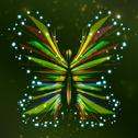 Stock Illustration of Shiny butterfly abstract