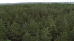 Stock Video Footage of Aerial shot flight above the forest