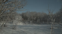 Snowy woods with frozen pond Stock Footage