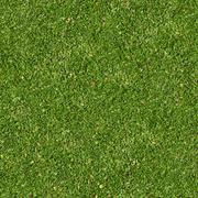 Green Grass. Seamless Tileable Texture. Stock Photos