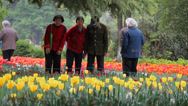 Stock Video Footage of People enjoy strolling through the park and admiring the flowers