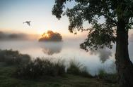 Stock Photo of beautiful autumnal landscape image of birds flying over misty lake at sunrise