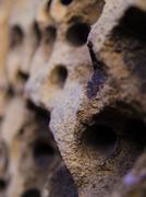Porous Textured Concrete Macro - stock photo