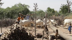 Africa - Water well, Mali village Stock Footage